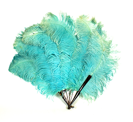 Fan of turquoise coloured ostrich feathers